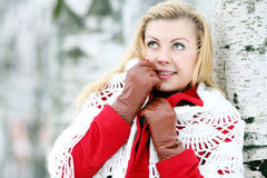 Beautiful blonde in a traditional Russian winter snow Stock Photography