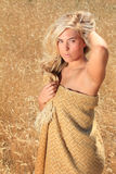 A beautiful blonde in wheat Royalty Free Stock Photo