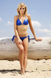 Beautiful blonde woman in blue bikini Stock Images