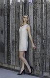 Beautiful blonde woman leaning against wooden fence. Portrait of a beautiful young blonde woman dressed in a short beaded cocktail dress in a pale gold, wearing Stock Photography