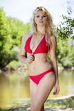 Beautiful blonde woman in red bikini. Young adult beautiful sensuality blonde woman in red  bikini posing on a log Stock Photo