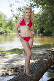 Beautiful blonde woman in red bikini Royalty Free Stock Images