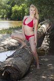 Beautiful blonde woman in red bikini Stock Images