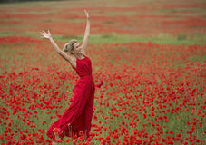 Beautiful blonde woman with red dress, in the middle of a poppy field Stock Photos