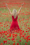 Beautiful blonde woman with red dress, in the middle of a poppy field Royalty Free Stock Image