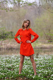 Beautiful blonde woman in red dress. Young woman with long legs standing in a park in spring time royalty free stock images