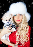 Beautiful blonde woman with small dog Royalty Free Stock Images