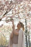 Beautiful blonde young woman in Sakura Cherry Blossom park in Spring enjoying nature and free time during her traveling stock photo