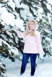 Beautiful blonde young woman wearing pink jacket and blue jeans next to snowy pine tree branches. In winter forest Royalty Free Stock Images