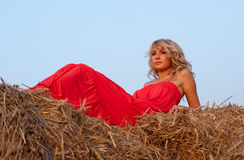 Beautiful blondie on a haystack Stock Photos