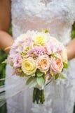 Beautiful, Bloom, Blooming, Blur royalty free stock photo