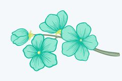Beautiful blooming branch, symbol of spring Stock Photos
