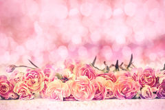 Beautiful blooming carnation flowers on the floor with filtered by sweet pink bokeh Royalty Free Stock Image