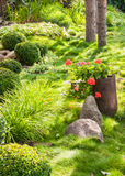 Beautiful blooming garden in summer Royalty Free Stock Images