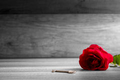 Beautiful blooming  red rose and key on wooden table Royalty Free Stock Photos