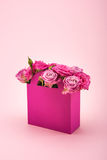 Beautiful blooming rose flowers in decorative paper box arranged isolated on pink Royalty Free Stock Images