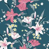 Beautiful blooming seamless pattern with white and pink Lilly. Stock Photography