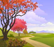 A beautiful blossoming trees in a rural landscape Stock Photos