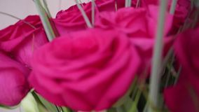 Beautiful blossoms of red roses. Bouquet of flowers close-up. Beautiful blossoms of red roses. Bouquet of flowers stock video