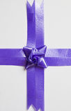 Beautiful blue bow Royalty Free Stock Photo