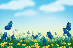 Free Beautiful Blue Butterflies With Yellow Flower Field Stock Images - 168413554