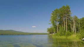 Beautiful blue clear water on the shore of the lake. Forest landscape at coast mirrored in water.  stock video