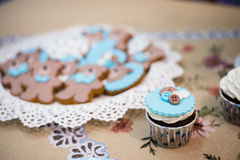 Beautiful blue cupcake and plate with teddy bears cookies biscuits Royalty Free Stock Image