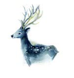 Beautiful blue deer Royalty Free Stock Images