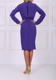 Beautiful blue dress Stock Images