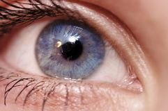 Beautiful Blue eye. Woman blue eye...close-up Stock Photo