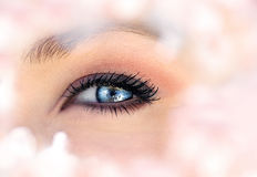 Beautiful blue eye Royalty Free Stock Photo