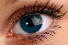 Beautiful blue eye. Blue eye look at you super vision Royalty Free Stock Photography