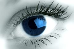 Beautiful blue eye. Blue eye look at you super vision Royalty Free Stock Image
