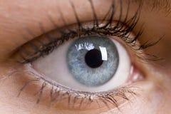 Beautiful Blue Eye. A macro close up shot of a beautiful female blue eye Royalty Free Stock Image