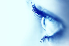 Beautiful blue eye royalty free stock photo