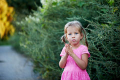 Beautiful blue-eyed girl with two pigtails pouted. Whims , Greens royalty free stock photos