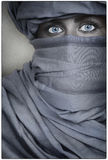 Beautiful Blue Eyed Woman Female Wearing a Veil Royalty Free Stock Photography