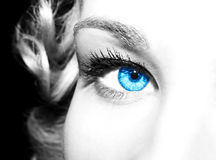 Beautiful blue eyes Royalty Free Stock Images