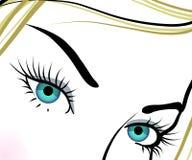 Beautiful blue eyes with long eyelashes Stock Image