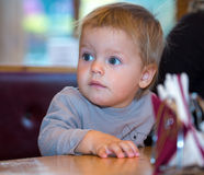 Beautiful blue eyes of one year old boy. Sitting if cafe Royalty Free Stock Images