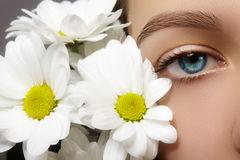 Beautiful blue female eye with white spring flower. Clean skin, fashion naturel make-up. Good vision, healthcare Royalty Free Stock Photos