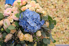 Beautiful blue Hydrangea macrophylla in bouquet of bride Stock Photo