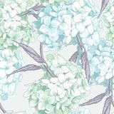 Beautiful Blue Hydrangea Seamless Background Royalty Free Stock Image