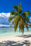 Beautiful blue lagoon beach, Maldives Stock Images