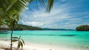 Beautiful blue lagoon with a palmtree in front, Gam Island, West Papuan, Raja Ampat, Indonesia. Beautiful Blue Lagoone with a Palmtree in Front, Gam Island, West stock footage
