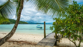Beautiful Blue Lagoone with a Palmtree in Front, Gam Island, West Papuan, Raja Ampat, Indonesia.  Stock Image