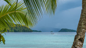 Beautiful Blue Lagoone with a Palmtree in Front, Gam Island, West Papuan, Raja Ampat, Indonesia.  Stock Photography