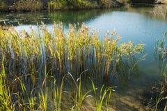 Beautiful blue lake. Lanscape with beautiful blue lake Stock Photo