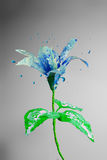 Beautiful blue lily flower made of bursting paint. On a grey background royalty free illustration