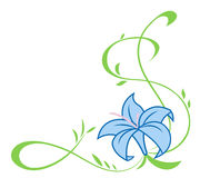 Beautiful blue lily flowers illustration Royalty Free Stock Images